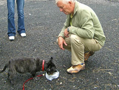 Plastic diepvrieszakje met water voor de hond