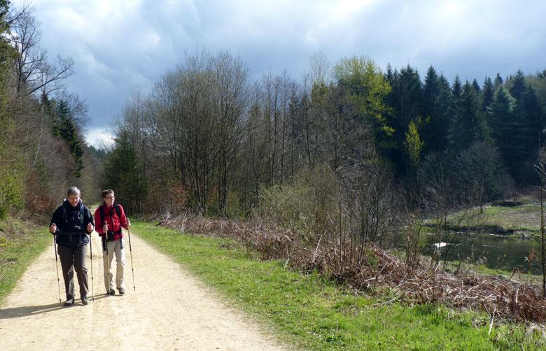 wandelen in het voorjaarszonnetje