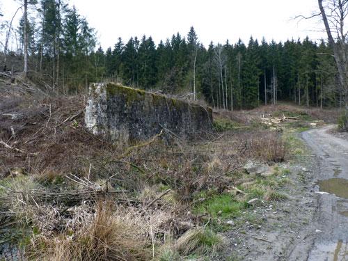 een oude muur midden in het bos