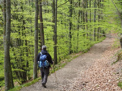 heerlijk wandelpad op weg naar Mormont