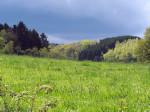 zon en dreigende wolken in het natuurgebied