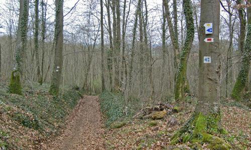 natuurpark buiten Torgny