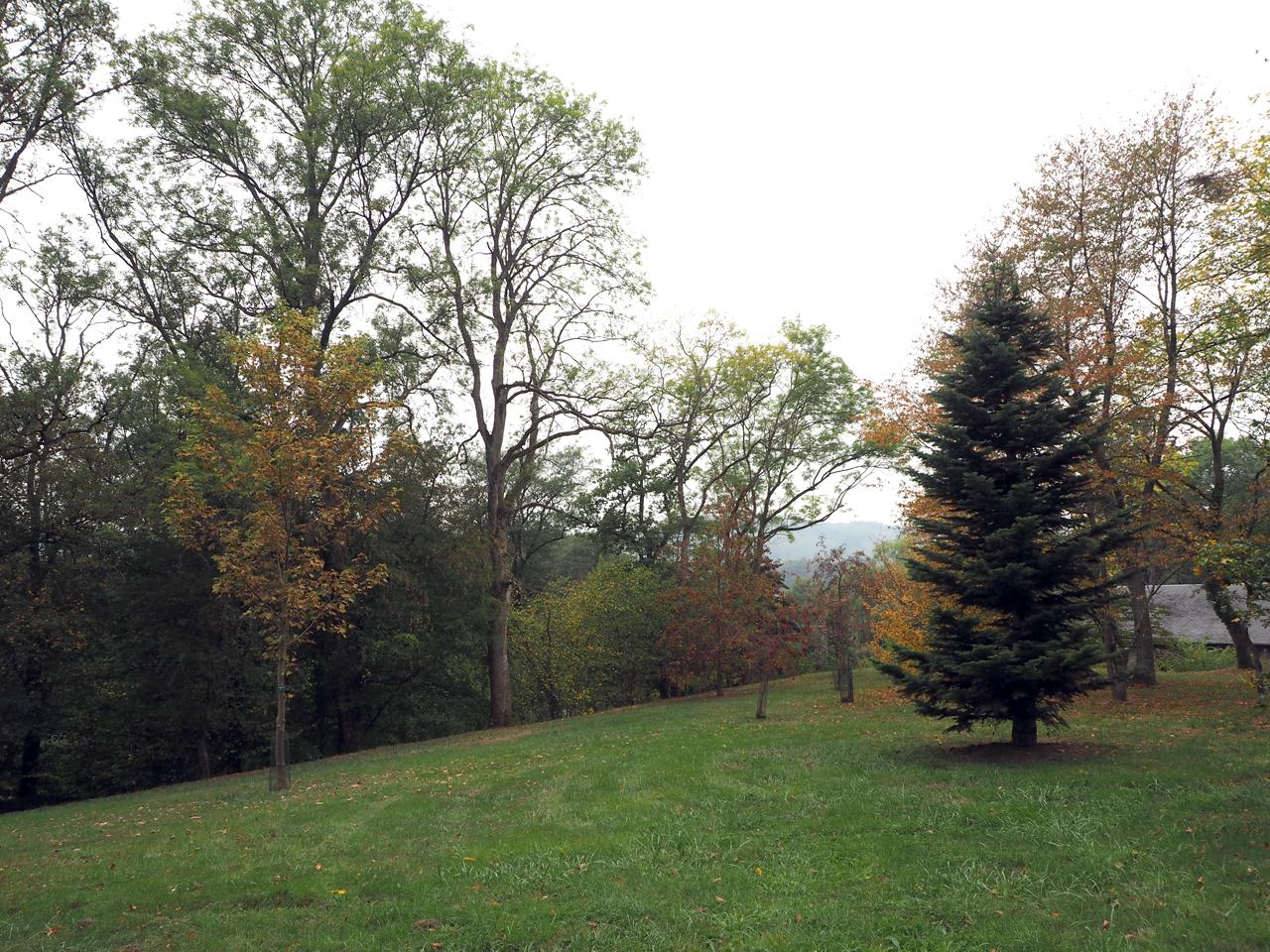 eerste stapjes in het Arboretum Robert Lenoir