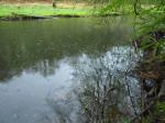 het bredere deel van het Ourthedal, een natuurgebied
