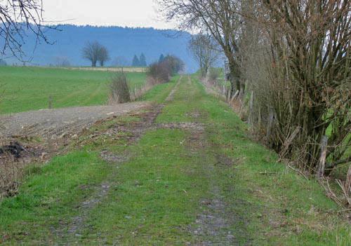 Over de oude spoordijk