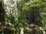 brug, tunnel en trappen de berg op