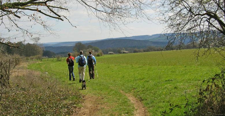 en dan een prachtig open Ardennen landschap