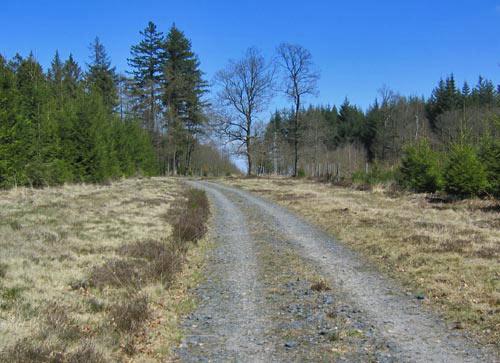 De mooie weg op het hoogste punt van de route: 530m