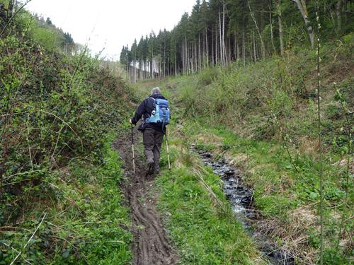 modderig pad het dal uit