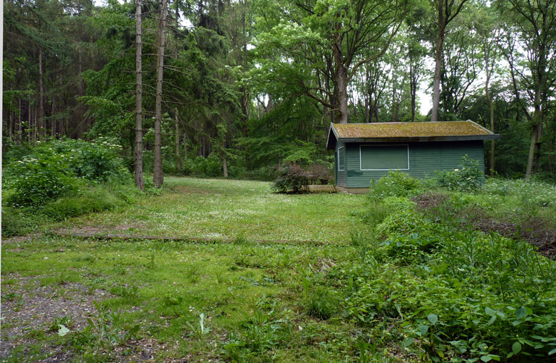 midden in het bos een schuur met leuk onderhouden tuin