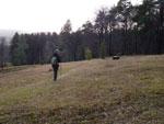 Het Naturschutzgebiet Silberberg