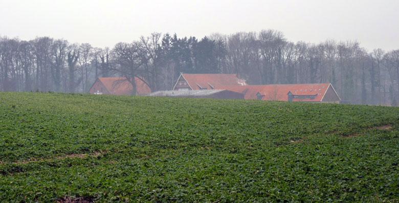de daken van het Bauerncafe Varus-Deele