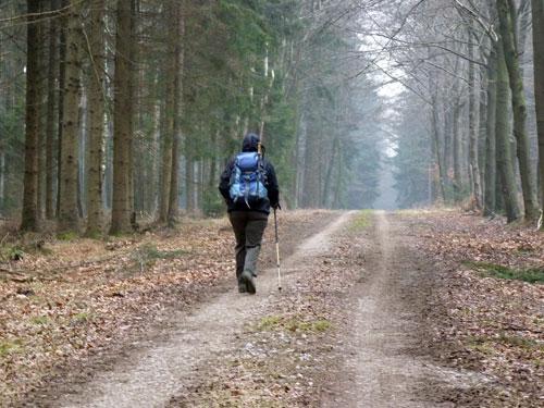 op weg naar de Schmittenhöhe