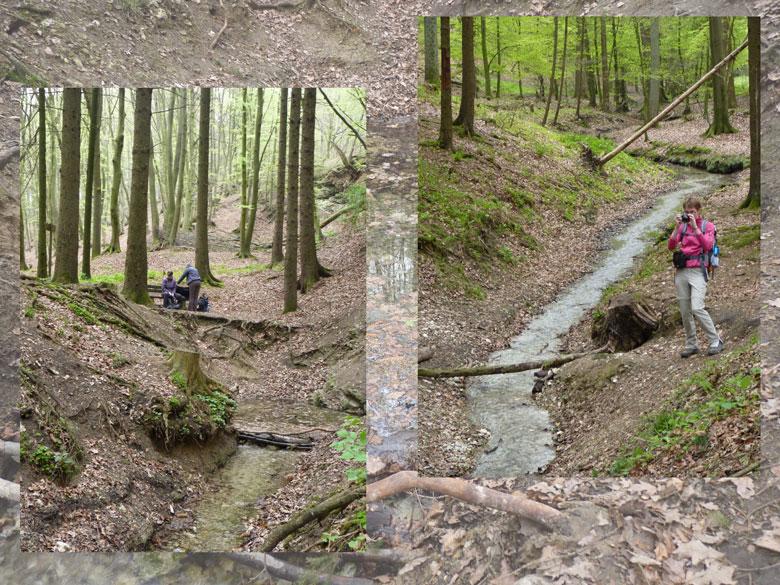 we zijn bij bron aangekomen, de Brüggeliet Quelle