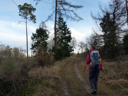 wandeling door een schitterend natuurgebied