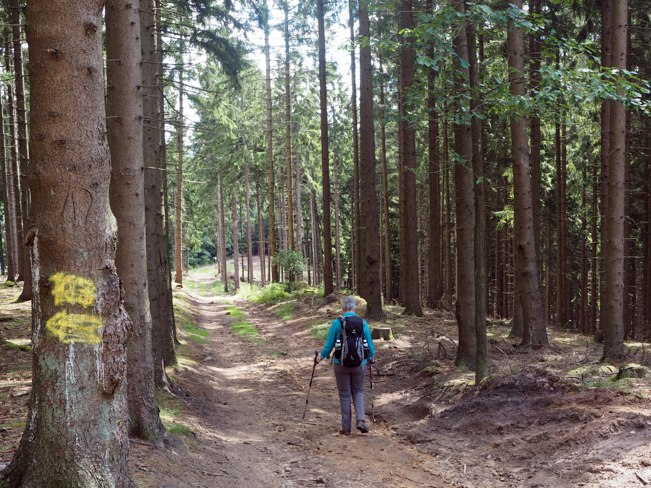 schitterend wandelpad Georgsmarienhütte