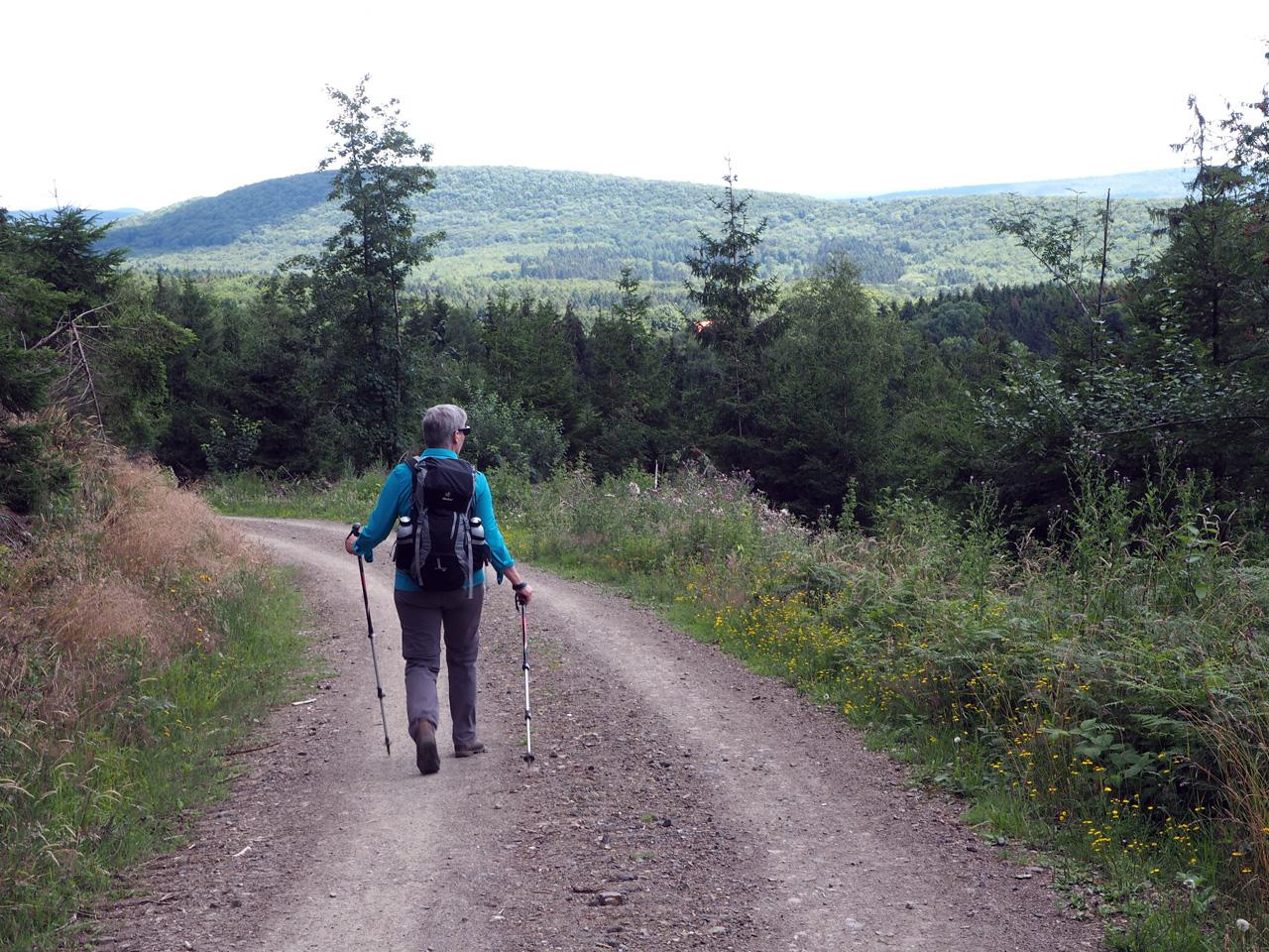 afdalen van de Dörenberg
