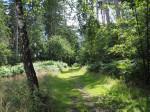 rondkijken bij de Bardenburg