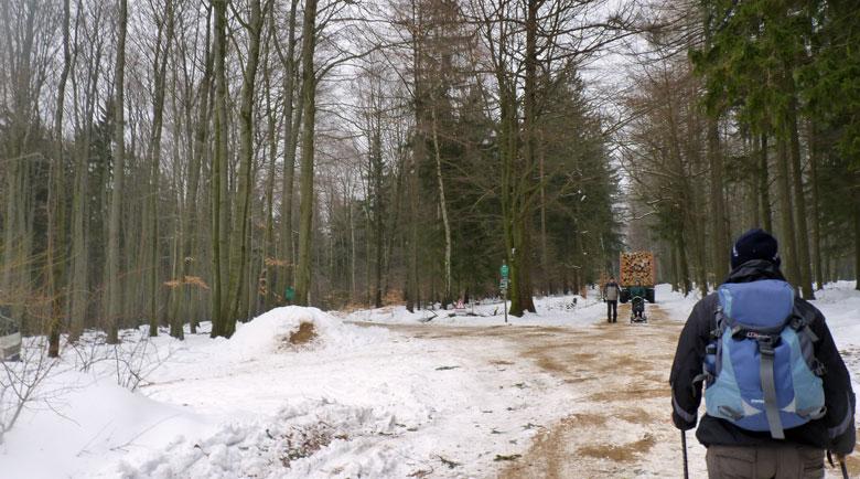 door de bossen rond Hinterhermsdorf