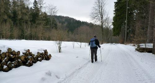 bossen en open gedeelten op deze rondwandeling