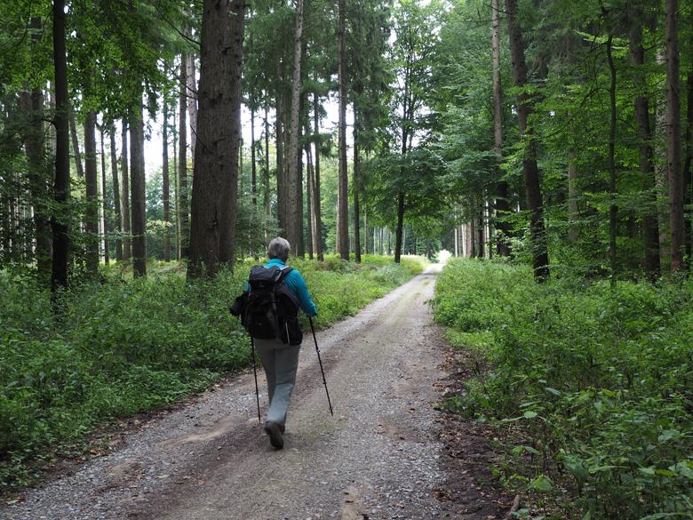 een lange rechte weg naar de Kronensee