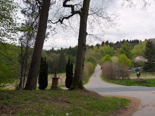 we kruisen de asfaltweg bij Schwarzenbruch