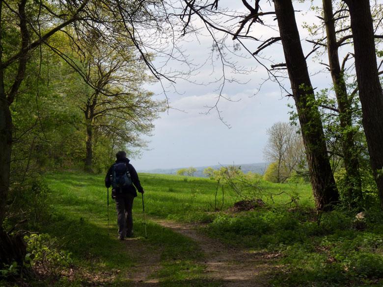 we kiezen het pad dat naar het open panorama loopt