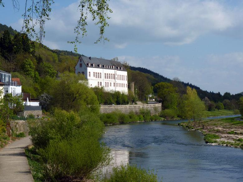 Burg Bollendorf komt weer in zicht