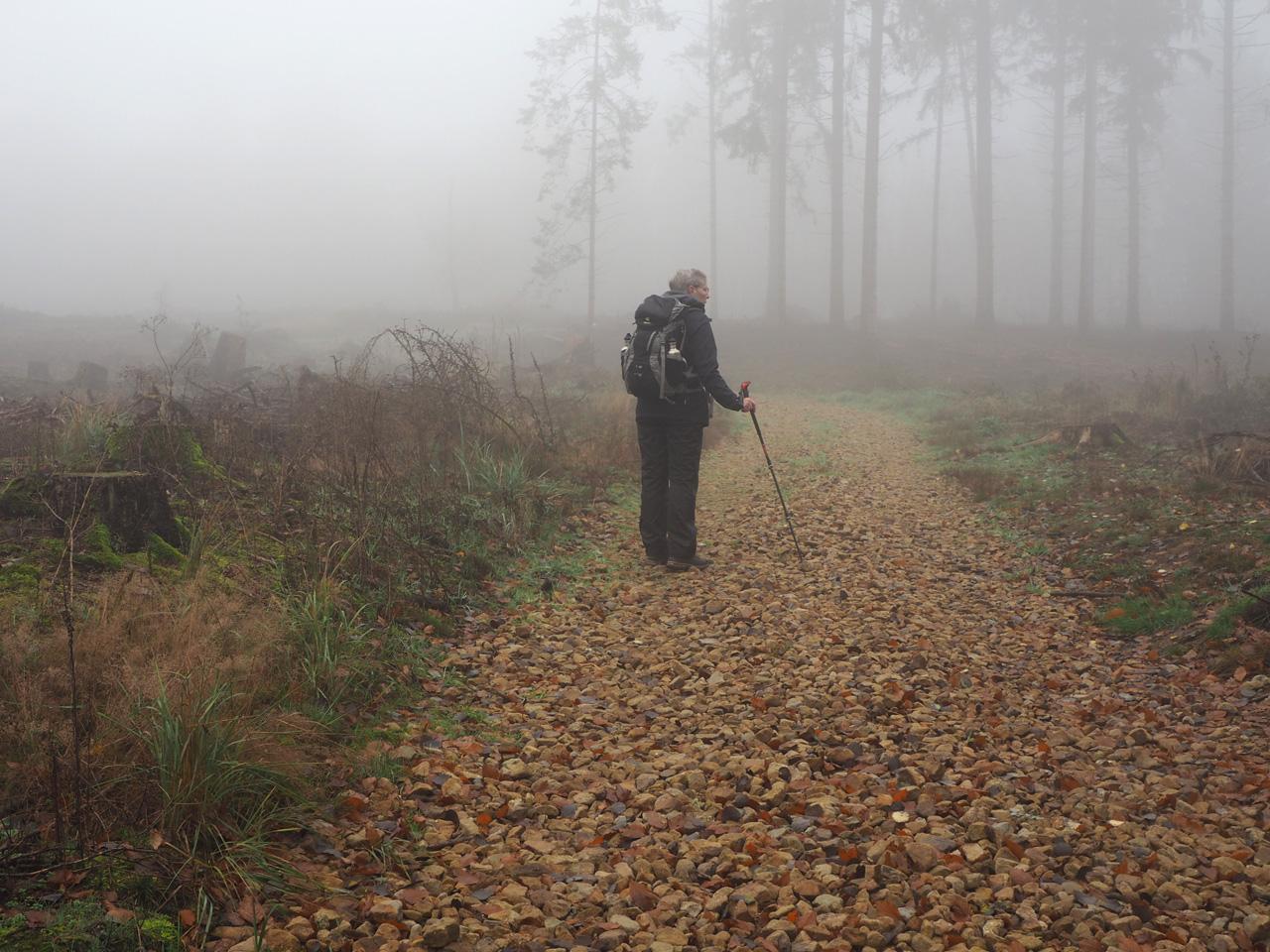 uitzichtpunt op de Borgberg
