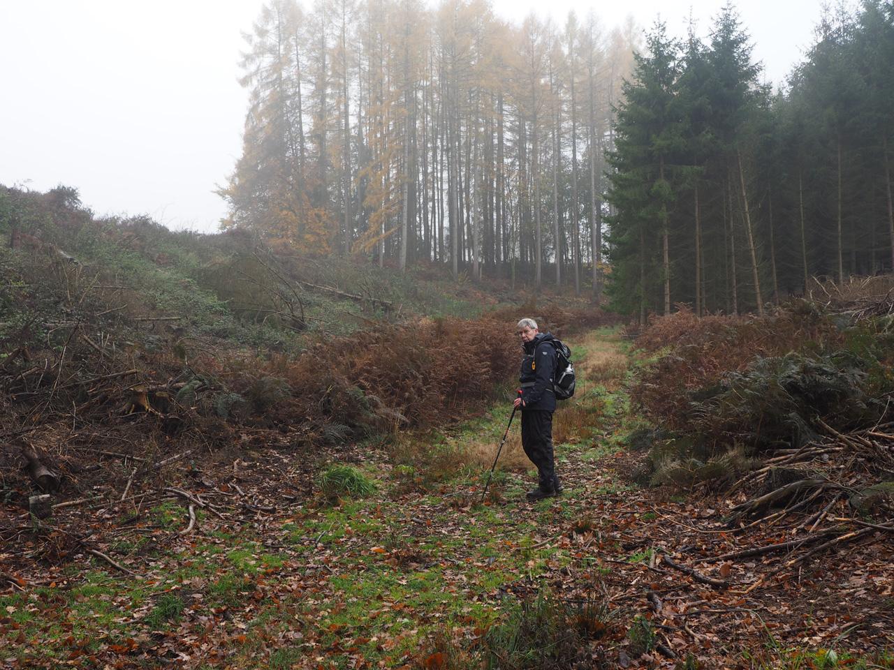 het mooie dal bij Sudenfeld