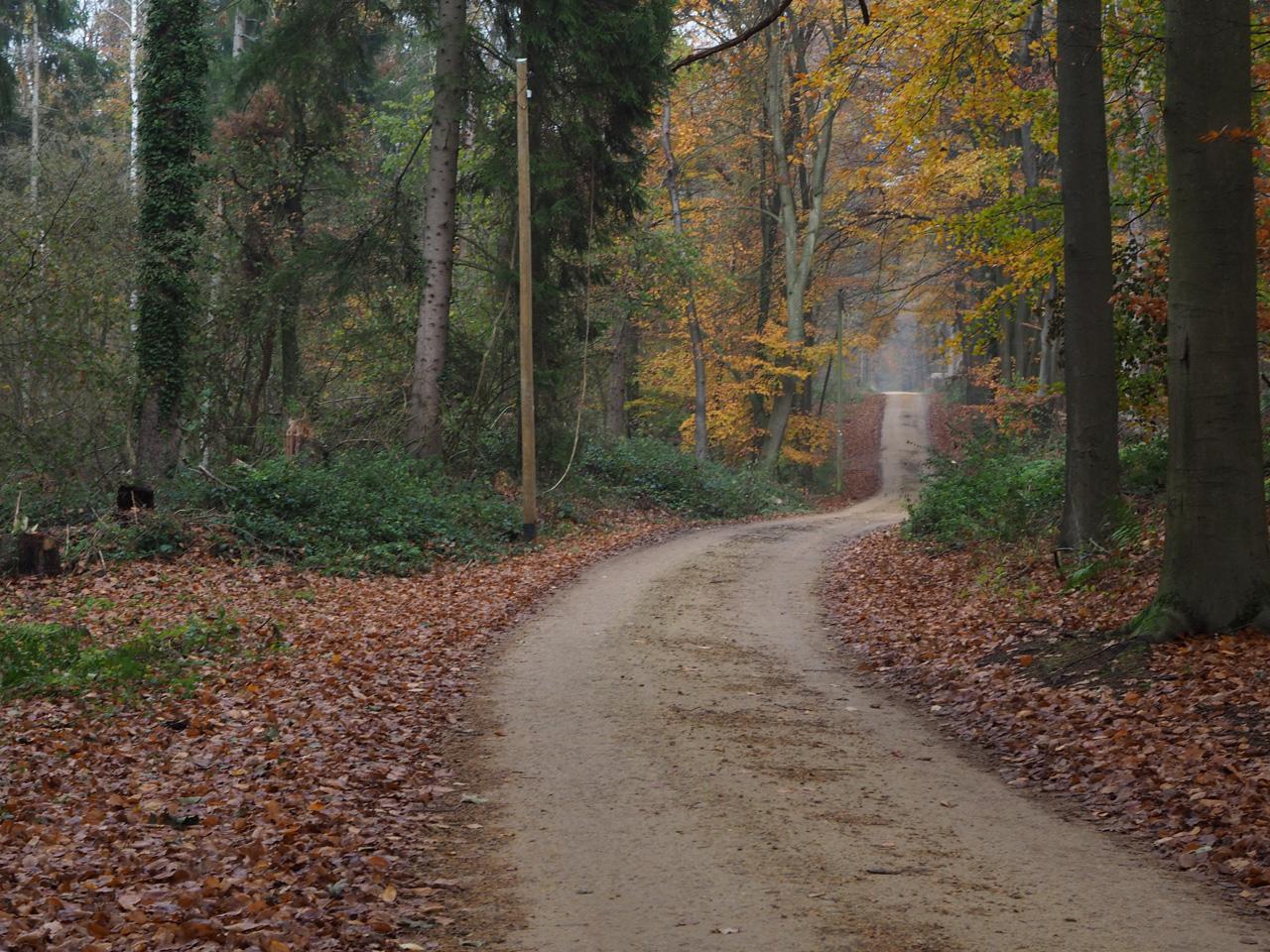 fraaie kerk in Gellenberg