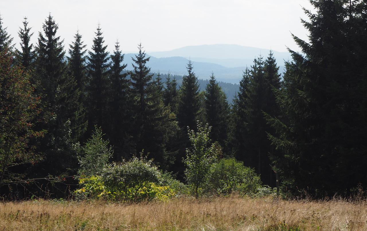 doorkijkjes in het Thüringer Wald