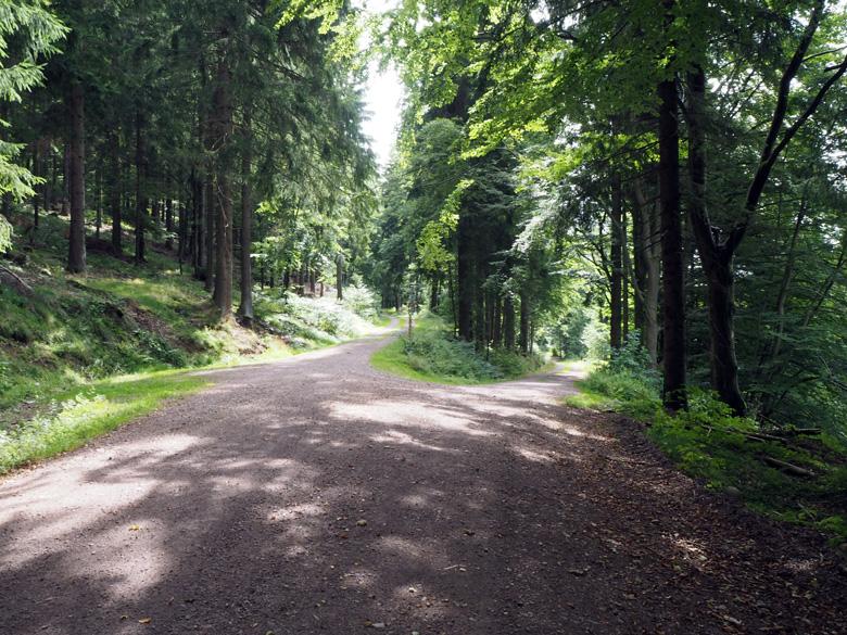 mooie brede wandelpaden door het dal