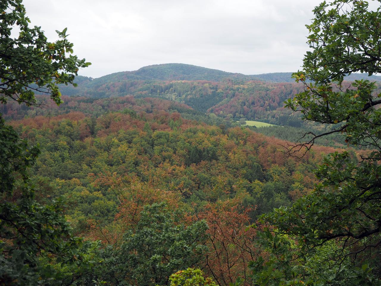 uitzicht over het Thüringer Wald
