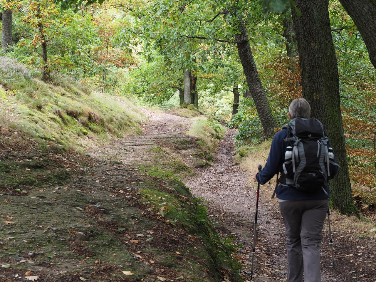 op weg naar het kasteel Wartburg