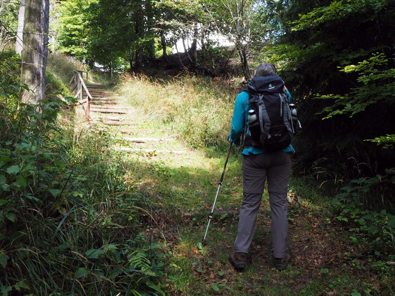 traptreden net onder de Inselsberg top