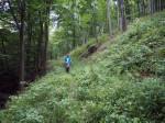 afdaling door het Sembachtal naar Winterstein