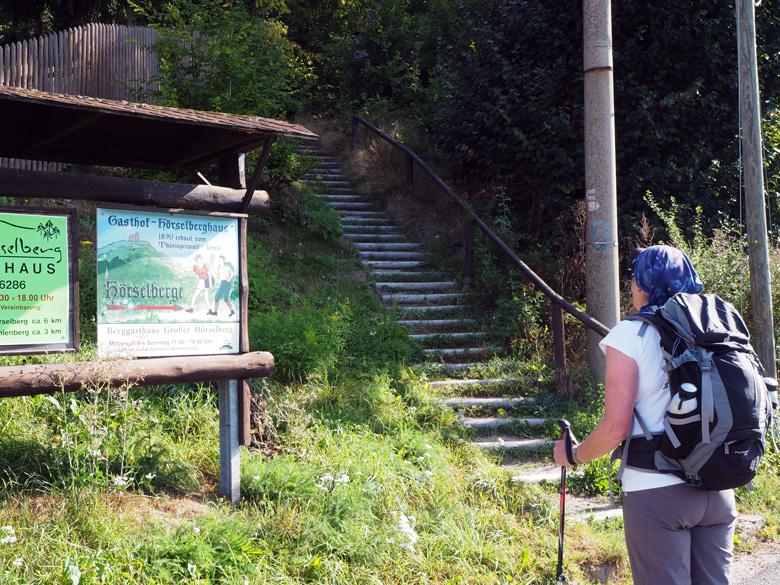 We gaan de trap omhoog het bos in