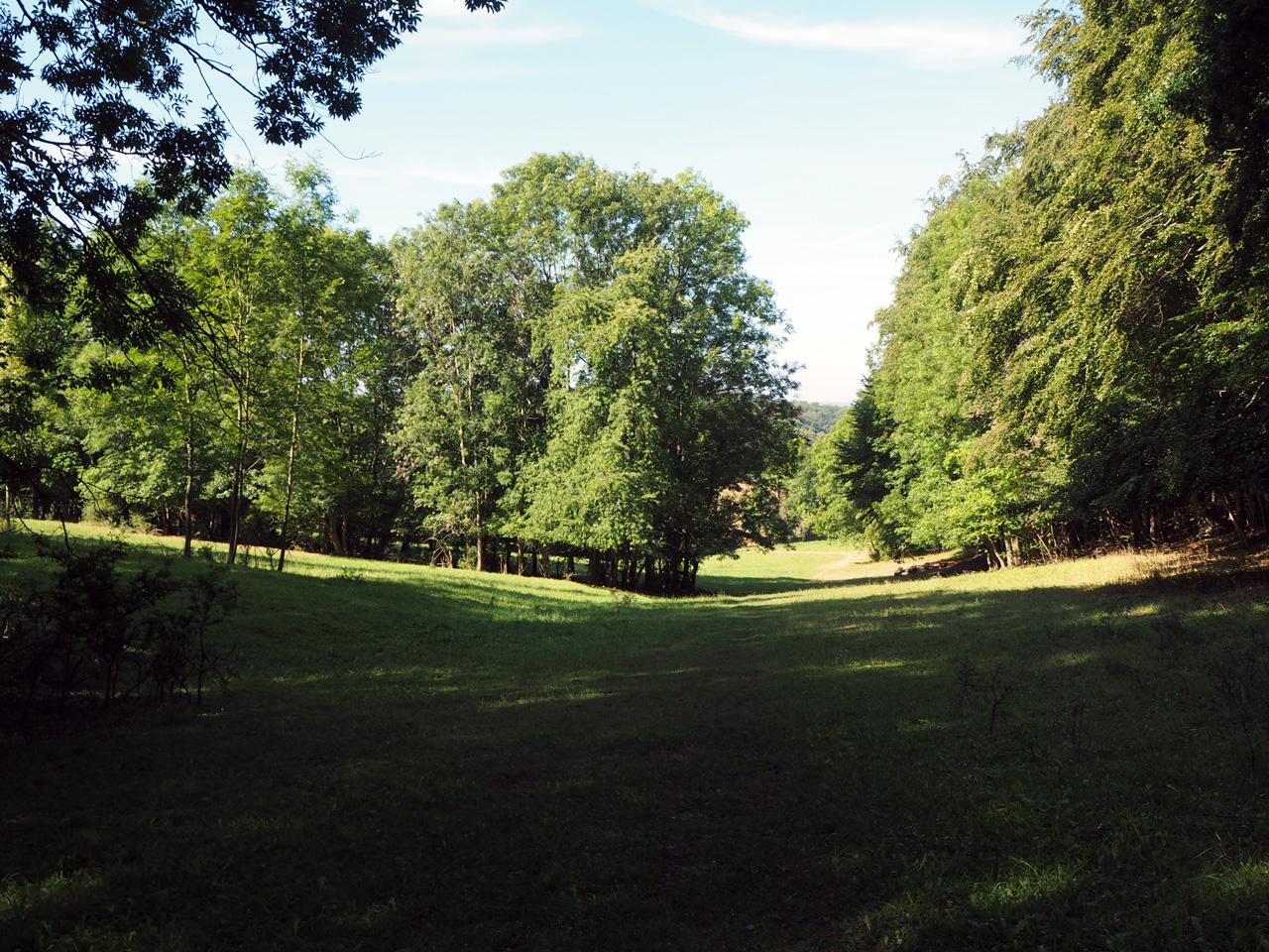 openlucht theater aan de bosrand