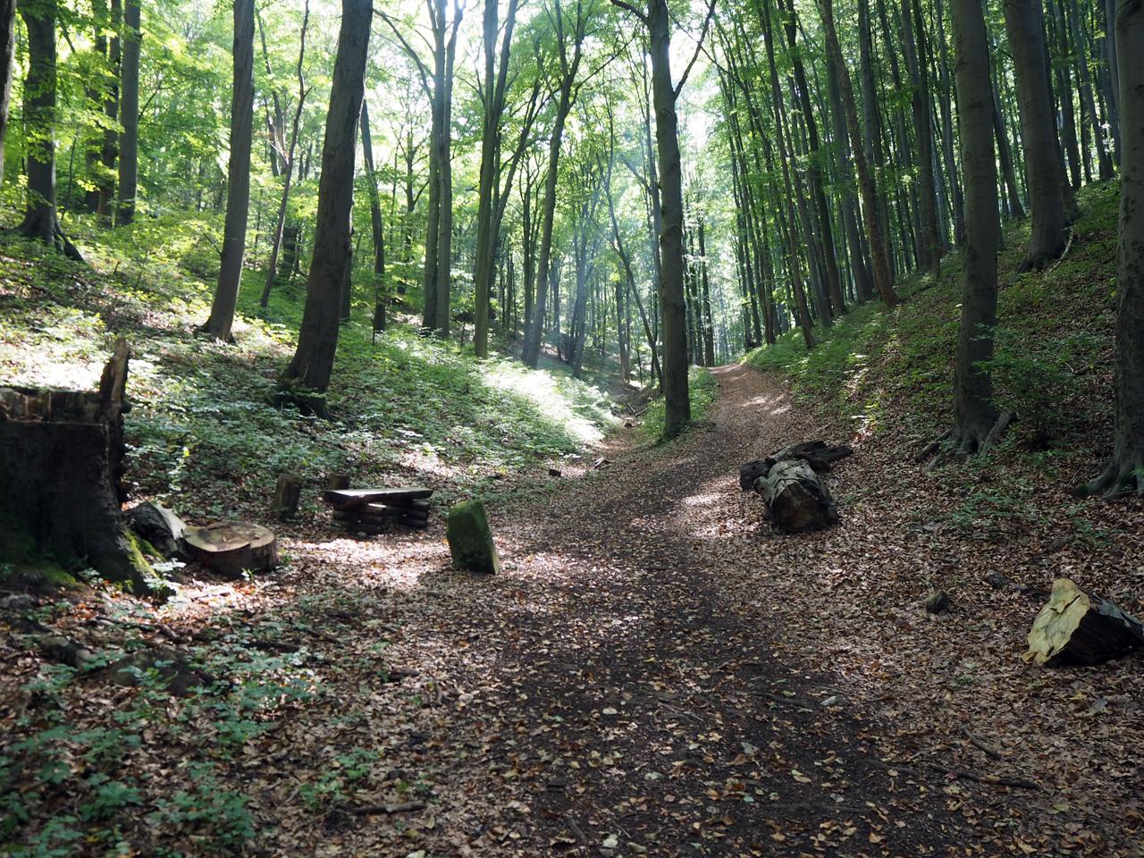 beklimming van de Grosser Hörselberg