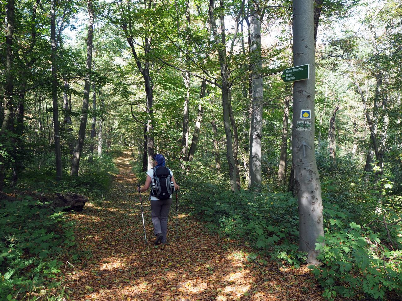in de schaduw over de Kamweg Hörselberge