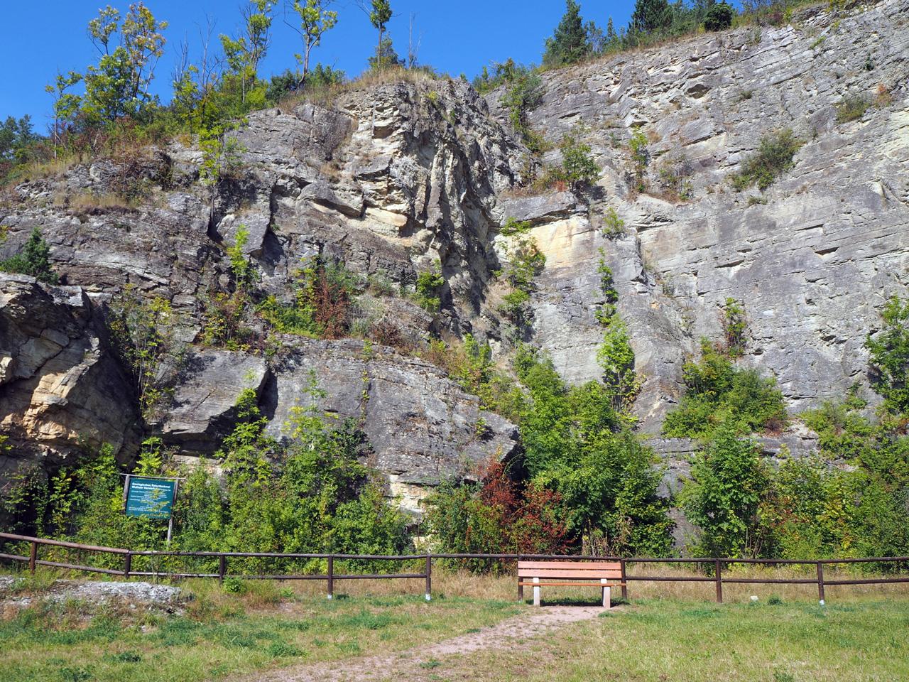 rotswand in Wutha-Farnroda