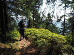 bergpaadje naar de Suhler Hütte