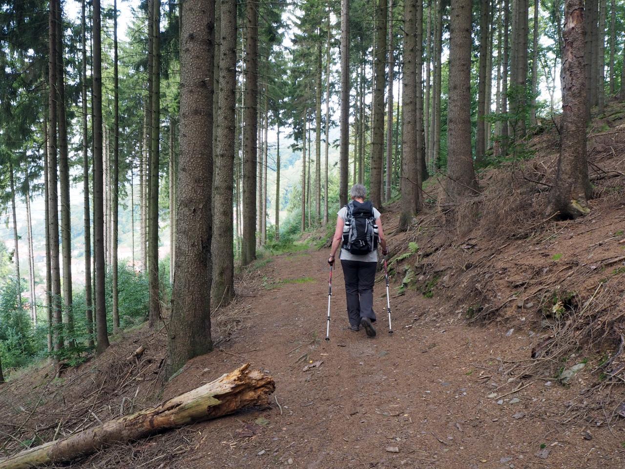 leuk pad langs de berghellingen