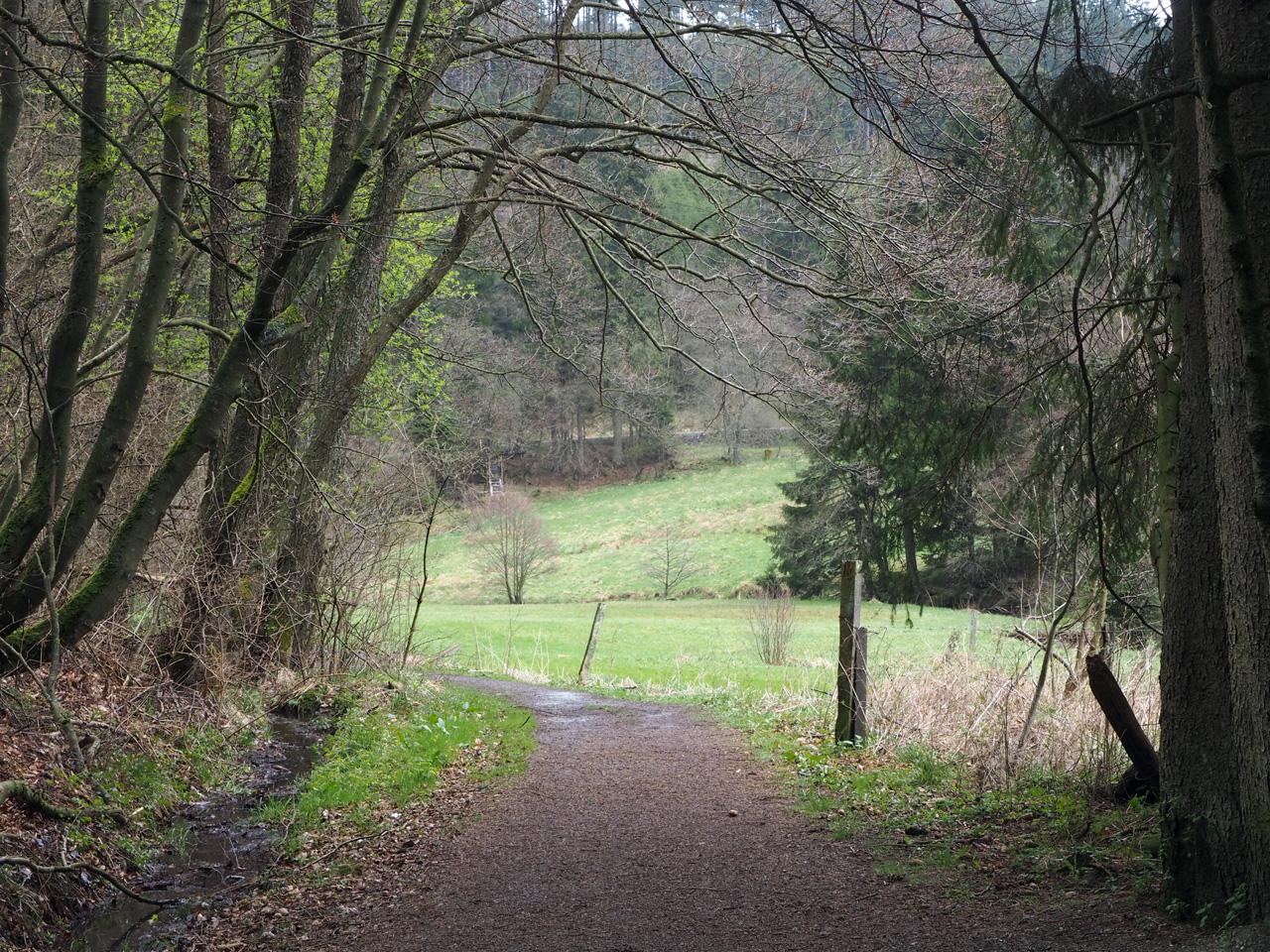 over en langs een mooi groen dal