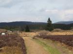 het Naturschutzgebied Neuer Hagen