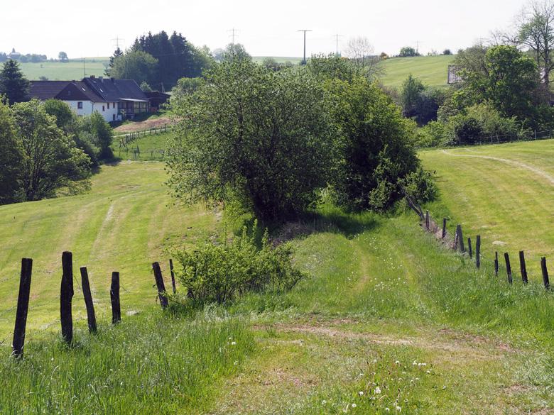afdaling naar Bungenberg