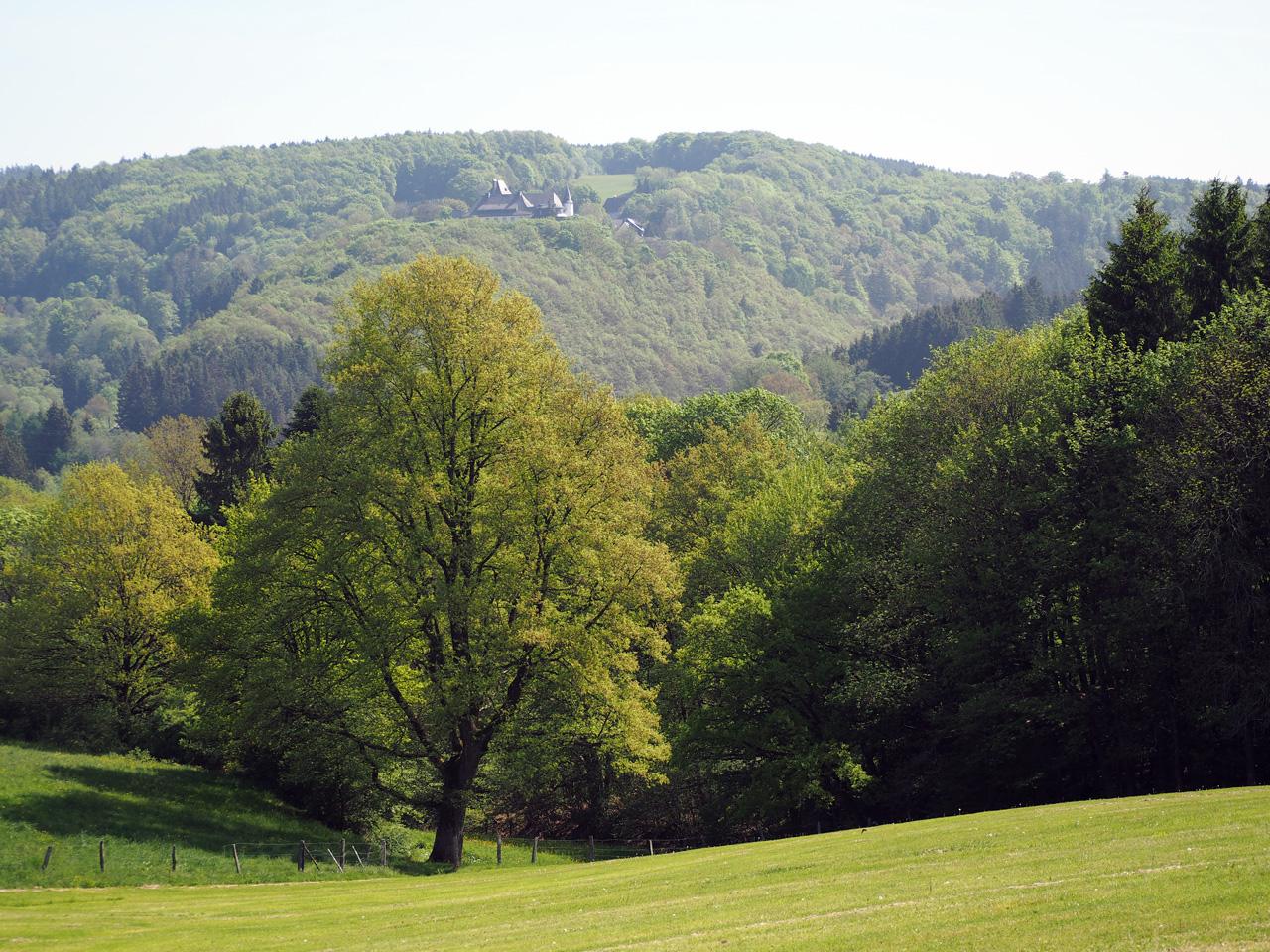 Eifeldal bij Bungenberg