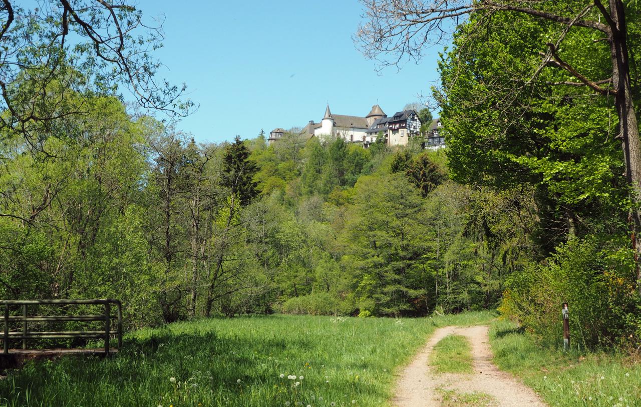 de eerste blik op Burg Wildenburg