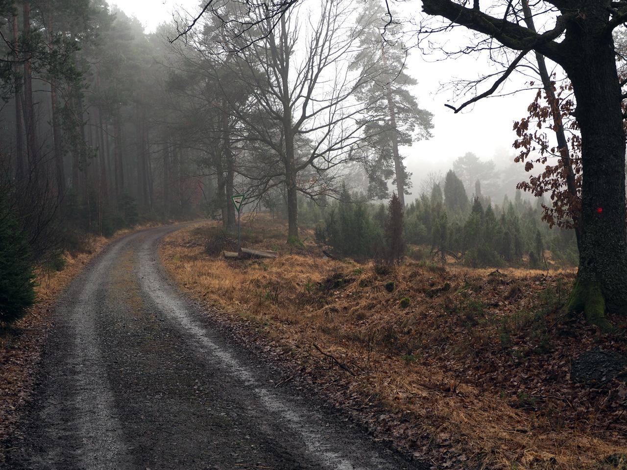 het Naturschutzgebiet Krähenpfuhl